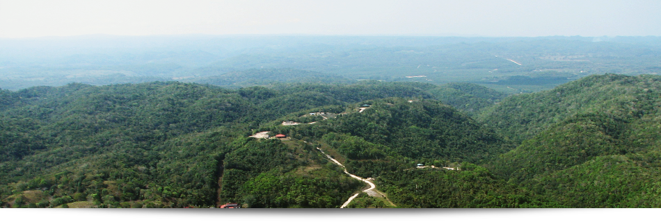 call it home.